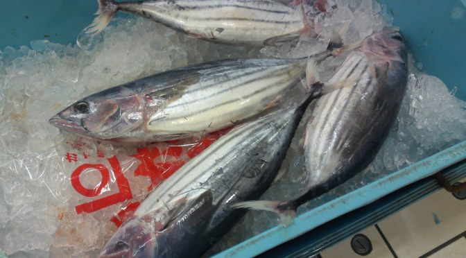 More Seafood and Fish At Parche Supermarket in Shizuoka City: With new Bonito/Katsuo!