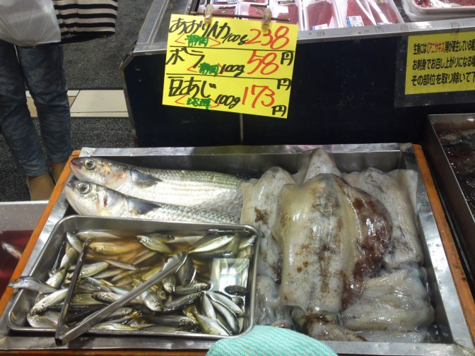 Local Shizuoka Fish at Parche Fish Market in Shizuoka City! Bigfin Reef Squid & Mullet